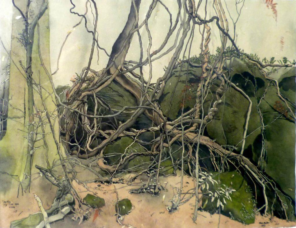 Max Miller: Native Fig Tree Vines