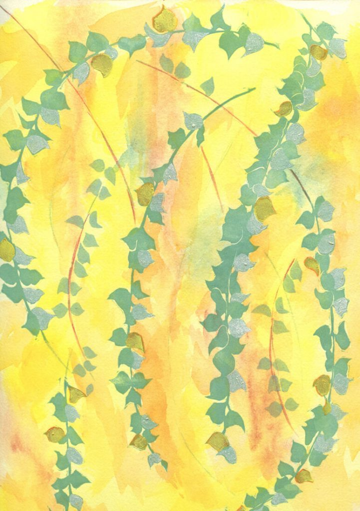 Linda Bottari: Wattle Beauty
