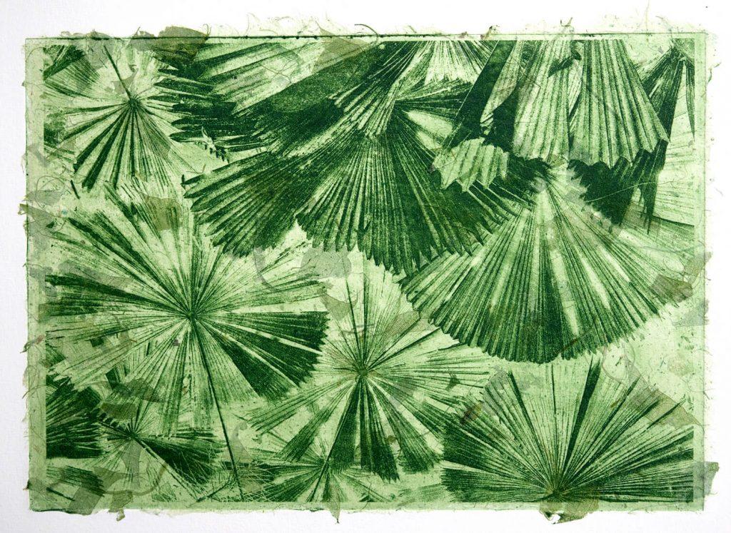 Margaret Fegent: Fan Palms