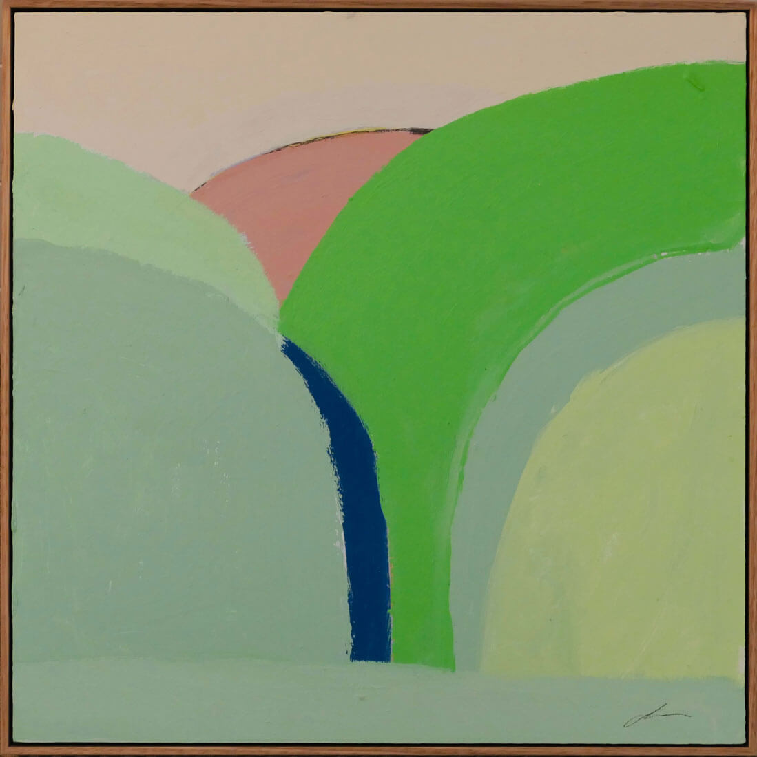 Daimon Downey: Up in Those Hills