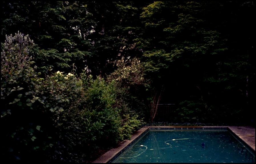 David Ryrie: The Pool #1, 2017